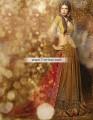 SC6770 Old Gold Carnelian Banarasi Jamawar Crinkle Chiffon Lehenga