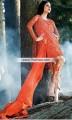 PW6769 Tomato Crinkle Chiffon Banarasi Jamawar Party Dress