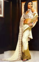 http://theheer.com/store/product_images/l/494/SR8182_gold_dip_Saree__54709_std.jpg