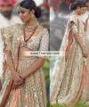 BW6868 Light Ecru Light Burnt Sienna Crinkle Chiffon Banarasi Jamawar Lehenga